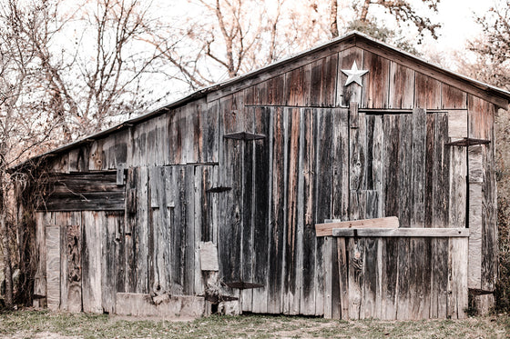 Texas photography, rustic home decor, barn photography, texas star, rustic photography, cool neutrals, gray, large wall art, texas decor