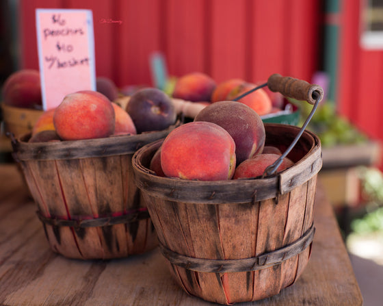 Kitchen photography peaches kitchen art rustic decor country living texas peaches farm nature photography large wall art red - Texas Peaches