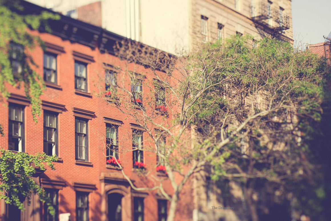 new york city photograph nyc photography chelsea manhattan brownstones urban decor elegant decor apartment large wall art oversized wall art