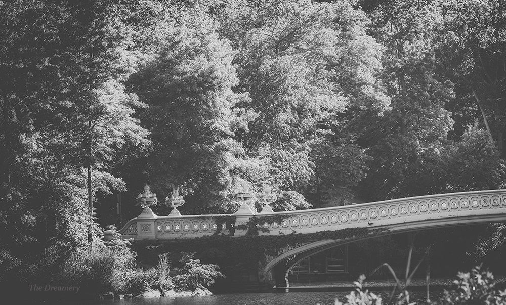 central park photography, new york city photography, central park photography, black and white photography, nyc decor, large wall art, nyc