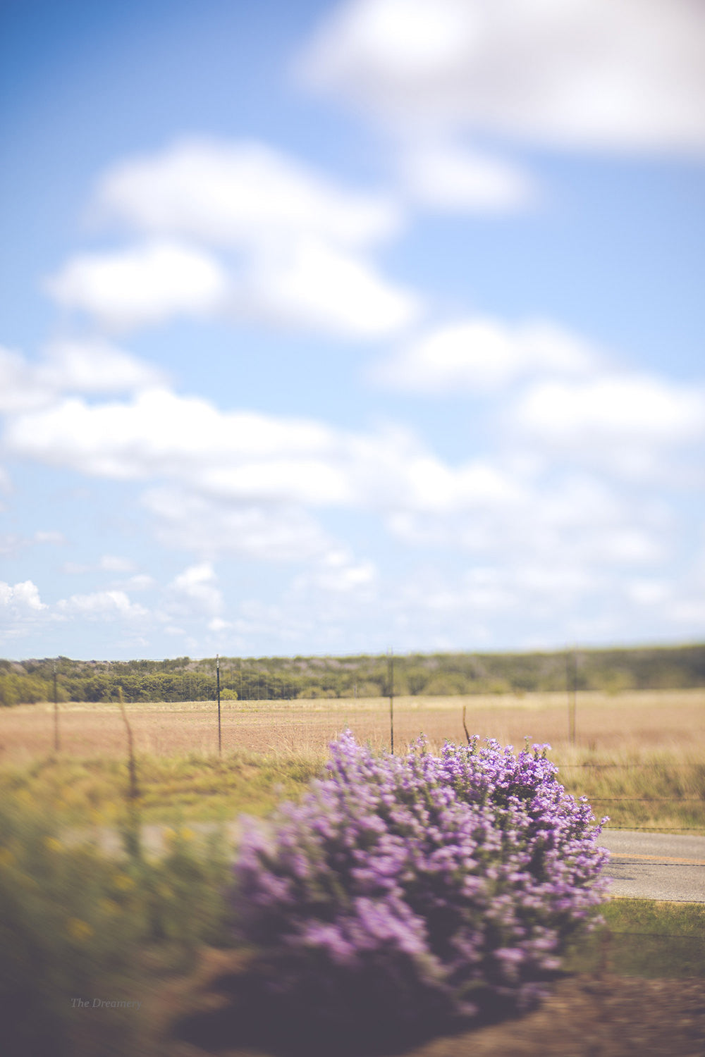texas photography, texas art, texas hillcountry, dreamy photography, big sky country, texas landscape photography, texas decor, southwest