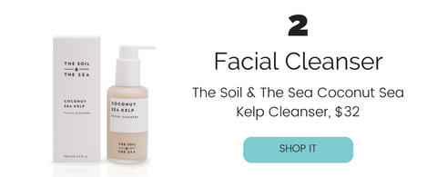 The Soil and The Sea Coconut Sea Kelp Vegan Facial Cleanser