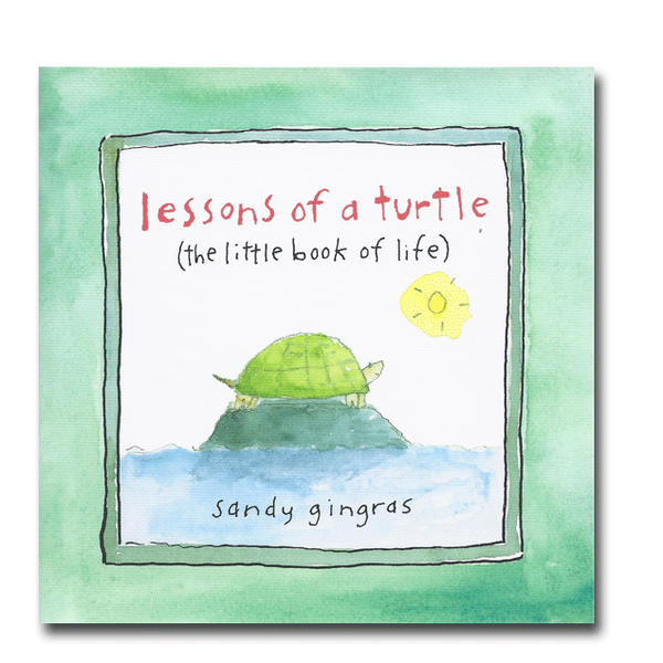 Lessons of A Turtle Book by Sandy Gingras at FantaSea Coastal Home beach house decor