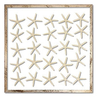 White Pencil Starfish by artist Karen Robertson Collection at FantaSea Coastal Home
