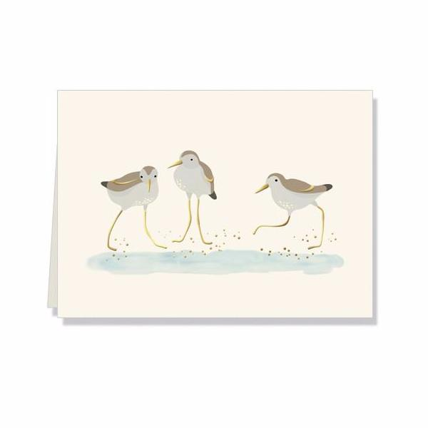 Plovers sea birds boxed thank you gift note cards at FantaSea Coastal Home beach house decor