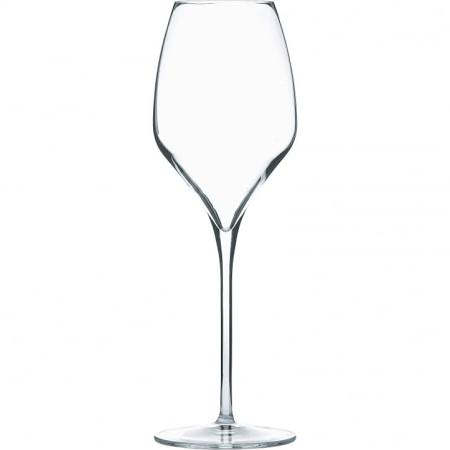 Luigi Bormioli Magnifico Large Crystal White Wine Glass 450mlk (Box of 24)