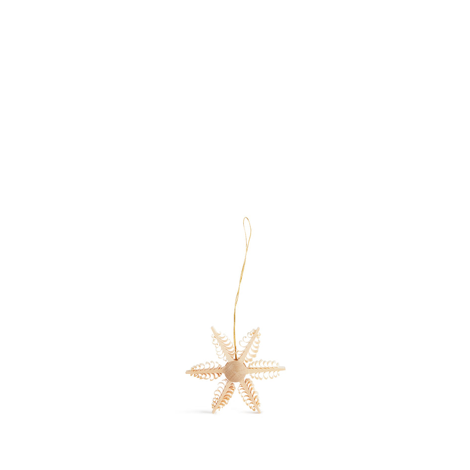Star Ornament Image 1