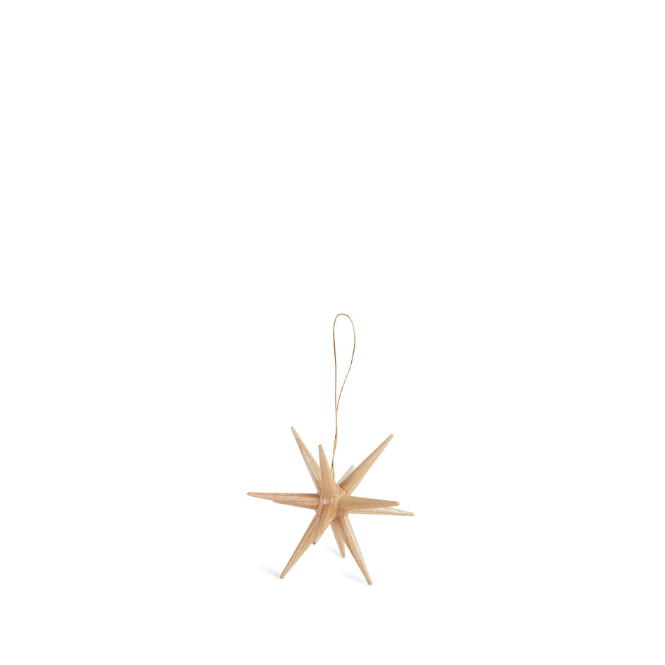 Starburst Ornament in Natural Image 1