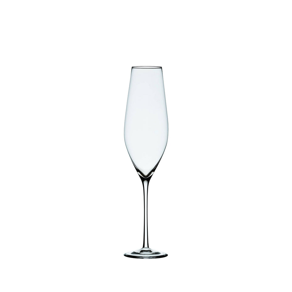 Cabernet Champagne Glass (Set of 6) Image 1