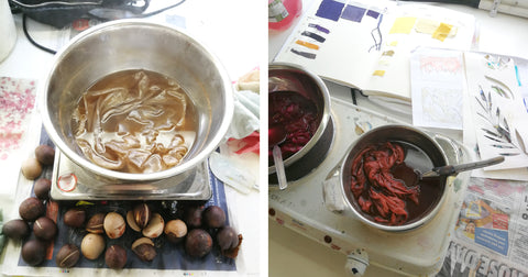 Natural dyeing with avocado and cochineal