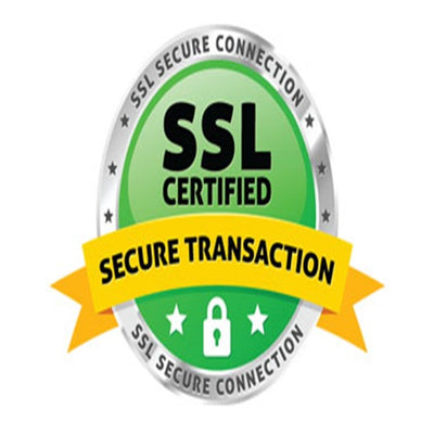 100 percent safe secure website payments