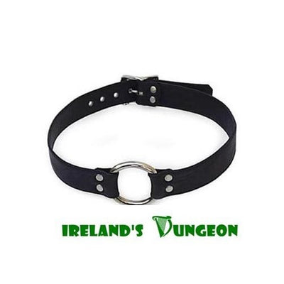 Stainless Steel Ring BDSM Bondage Ball Gag for watersports and oral sex- Irelands Dungeon
