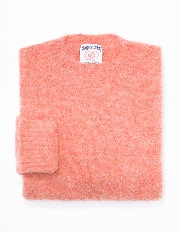 SHAGGY DOG SWEATER ORANGE - CLASSIC FIT