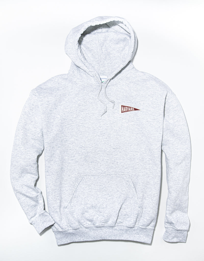 J. PRESS LONG SLEEVE HARVARD UNIVERSITY HOODIE - GREY