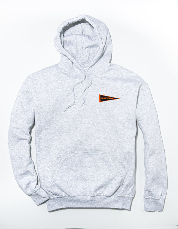J. PRESS LONG SLEEVE PRINCETON UNIVERSITY HOODIE - GREY