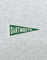 Grey Long Sleeve Hoodie Dartmouth