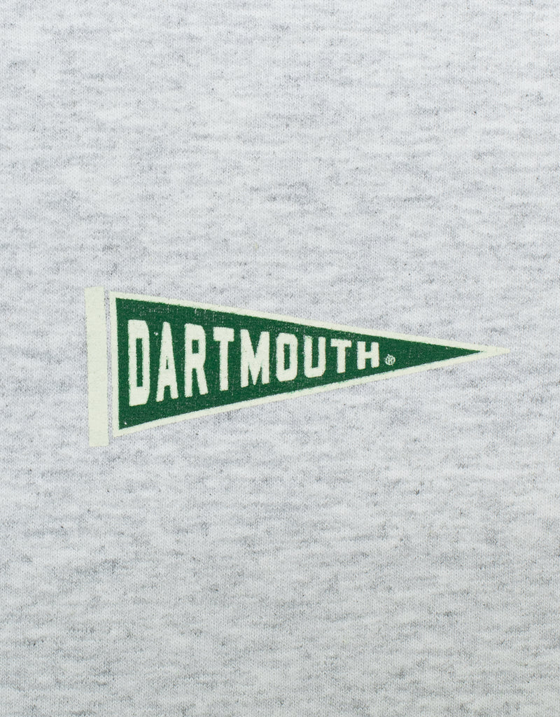 GREY LONG SLEEVE HOODIE - DARTMOUTH