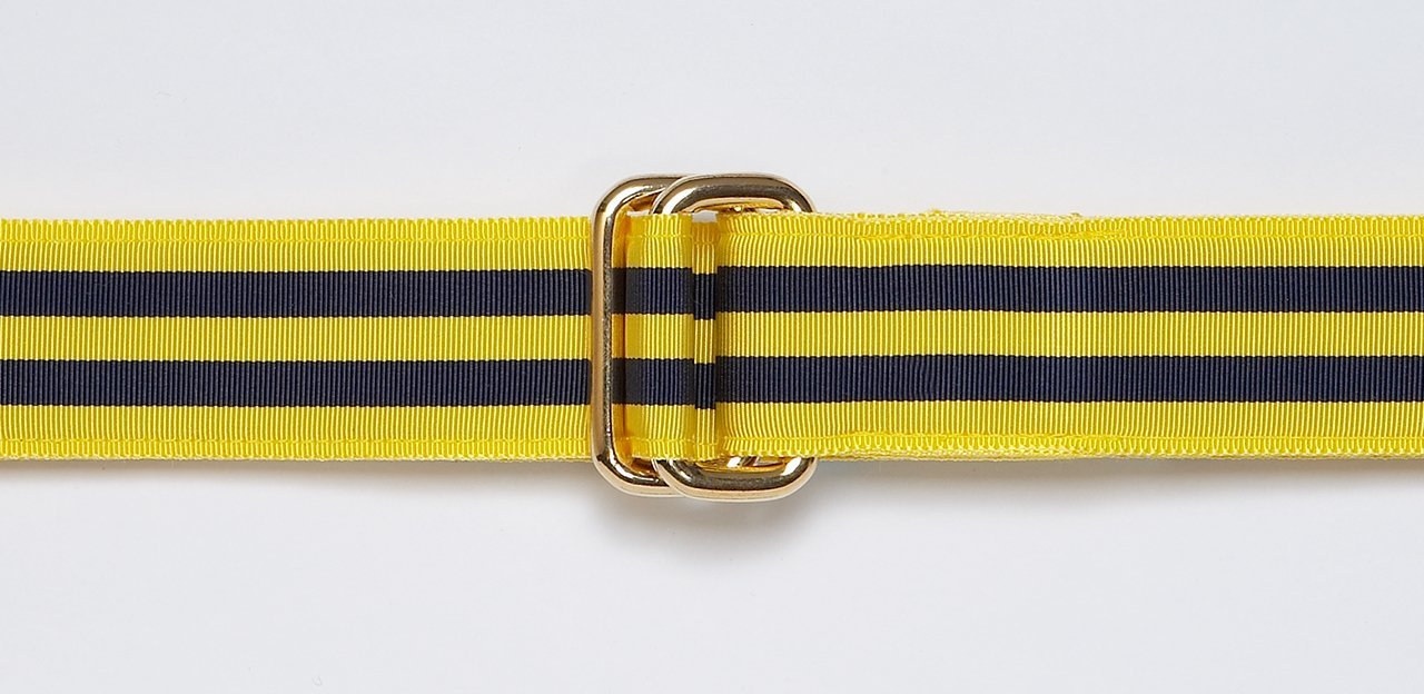 RIBBON BELT - NAVY/YELLOW