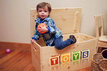"Little Prints: ""TOYS"" Toy Storage Box"