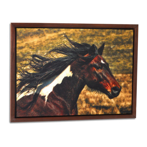 Spirited Paint Horse Framed Wall Art - Spirit of the West Rustic Decor