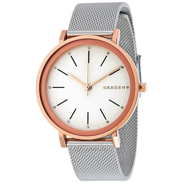 Skagen Women's SKW2506 'Hald' Stainless Steel Watch
