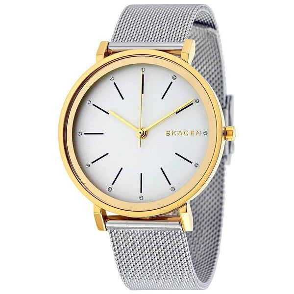 Skagen Women's SKW2508 'Hald' Stainless Steel Watch