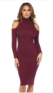 Sofía Turtle Neck Dress- Wine