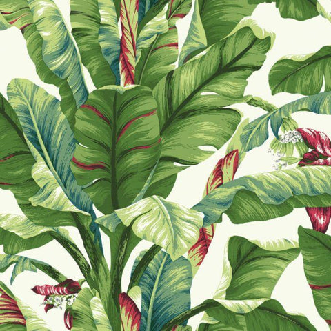 AT7068 Banana Leaf Sure Strip Wallpaper - wallcoveringsmart