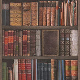 WM93480901 Bookshelf wallpaper antique vintage books brown book shelves