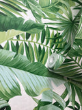 FD24136 Palm Banana Leaf White Green Tropical Wallpaper
