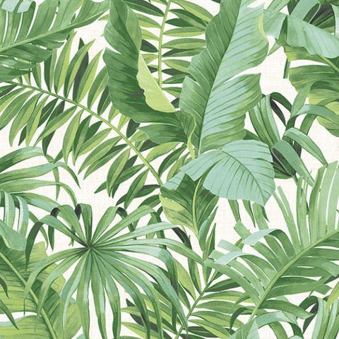 2744-24136 Brewster Palm leaves Banana Leaf White Green Tropical Wallpaper - wallcoveringsmart