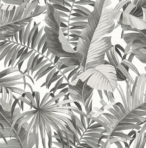 Black Grey Palm Banana Leaf Wallpaper
