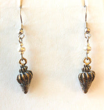 Colorful Conch Seashell Earrings