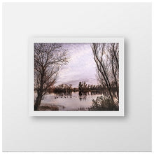 Nature Photography | Ducks on a Pond | Winter Landscape | Family of Ducks-Photograph-Patti Mustain