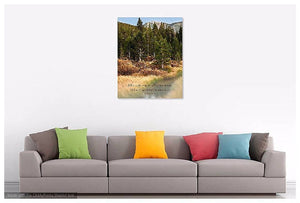Yosemite Photography | Fall Colors in Tuolumne Meadows | Pained Effect-Photograph-Patti Mustain