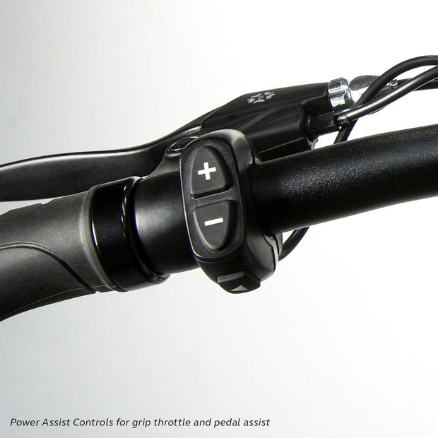 Flash Power Assist controls for pedal assist and throttle