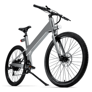 Flash v1 Bike in Silver