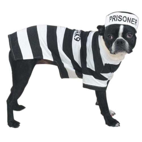 Casual Canine Prison Pooch Costume - Dog Costumes