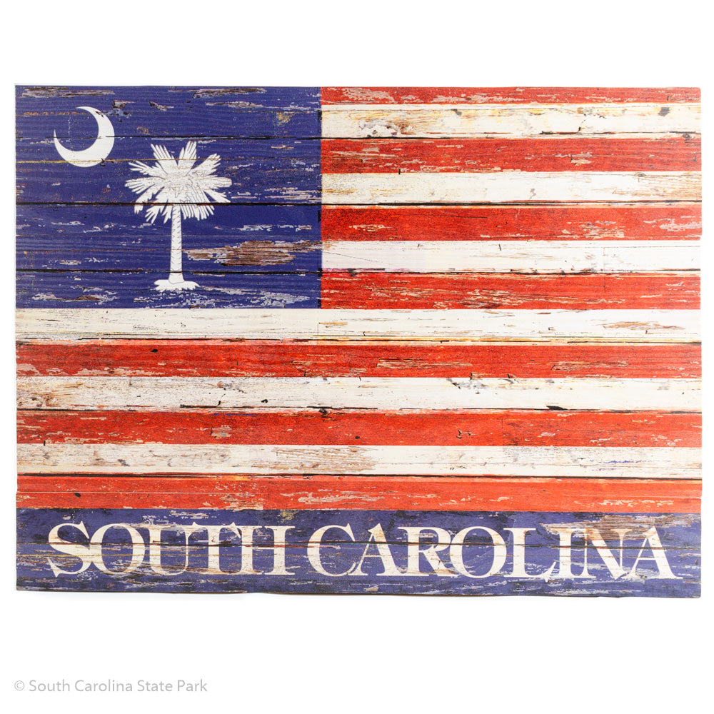 South Carolina American Flag - ADI01908
