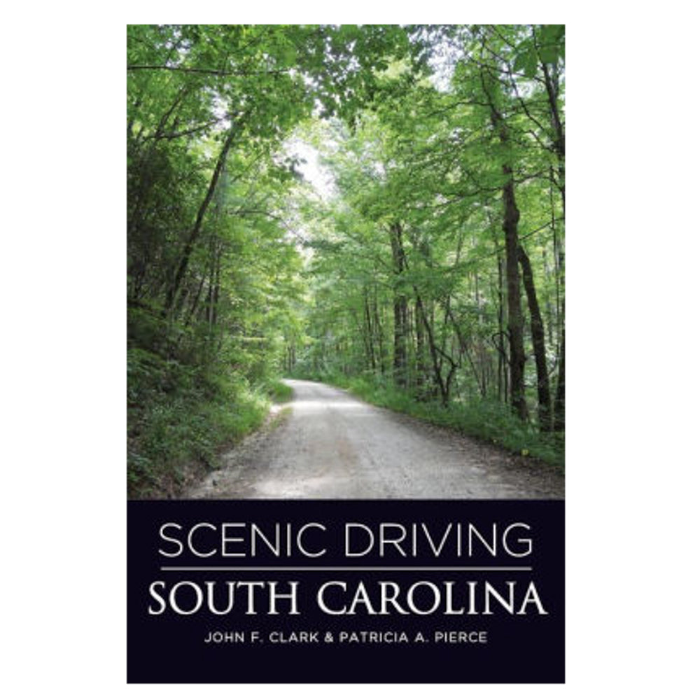 Scenic Driving South Carolina - CAEI01729