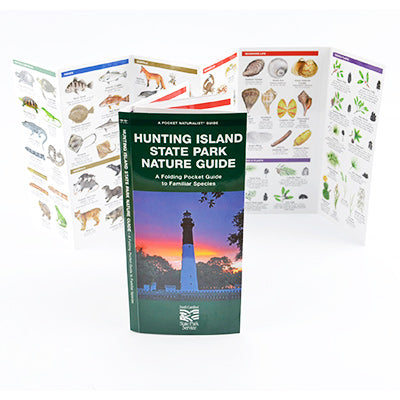 Hunting Island State Park Nature Guide - HISI0006970