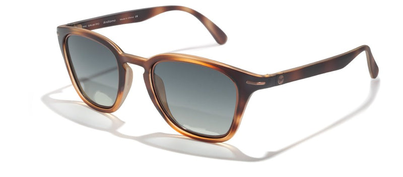 Andiamos Sunglasses - OnwardReserve