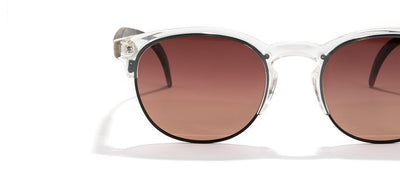 Avila Sunglasses - Clear Tortoise