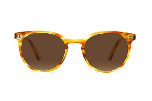 Oxford Sunglasses in Honey Oak
