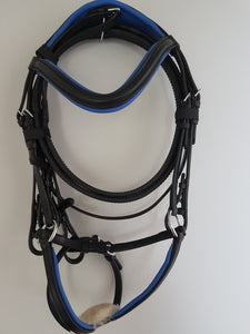 Grackle Bridle - Black Leather with Blue  Full, Cob, Pony