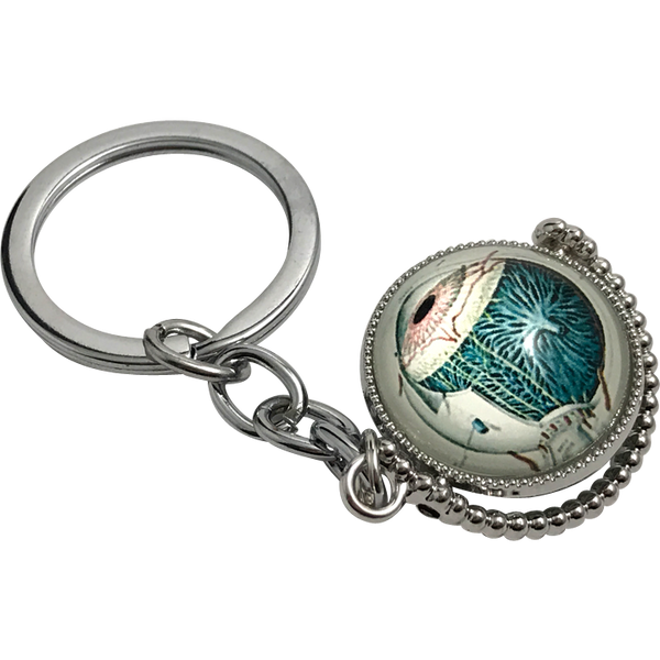 Anatomical Eye Novelty Keychain