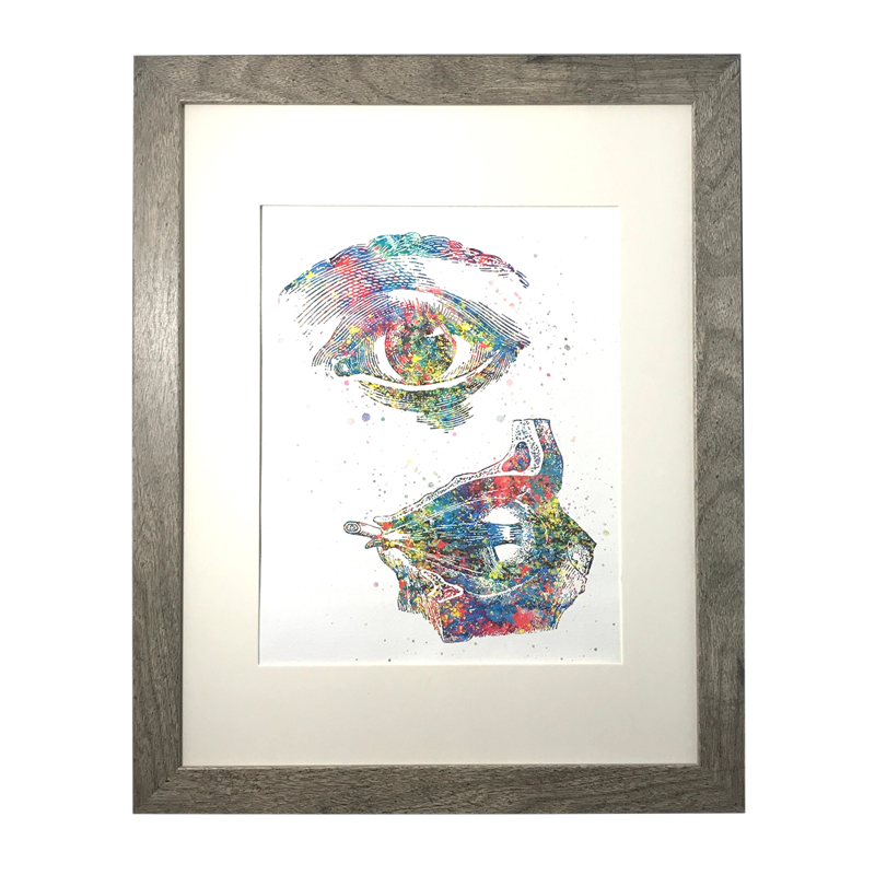 Anatomical Eye Watercolor Canvas