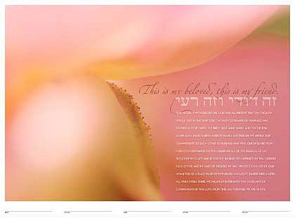 Blush Ketubah by Daniel Sroka
