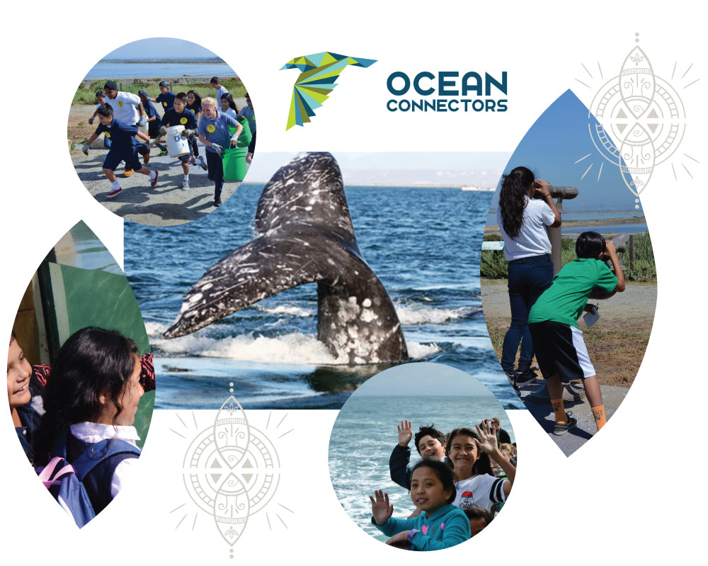 giving back jewelry to help non profit help ocean gift underserved youth explore ocean san diego mexico help