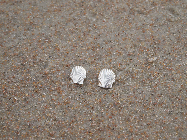 Tiny Scallop Shell Studs